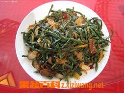 果蔬百科干豇豆炒肉